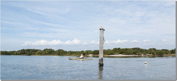 Back bayou paddle - Cedar Key
