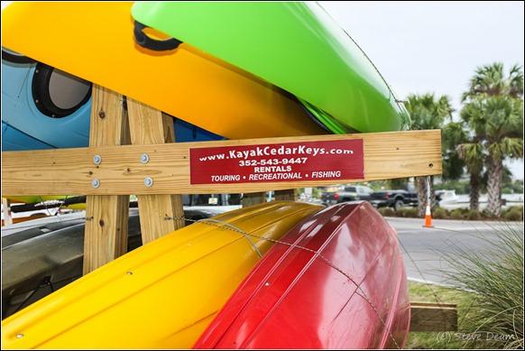 Kayak Cedar Key-7